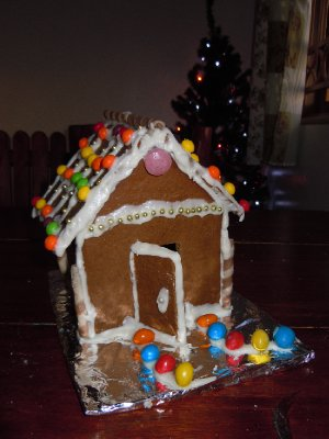 Quite possibly the best gingerbread house I have ever built!