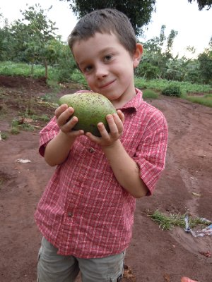 Graham holds up a huge avocado we received as a gift from one of Resty's neighbours