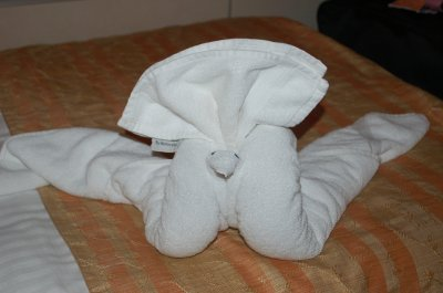 Towel Animal of the Day, we think it is a swan.