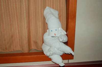 Day 4 towel animal.