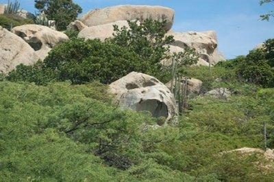 Rock formation looks like a monkey!