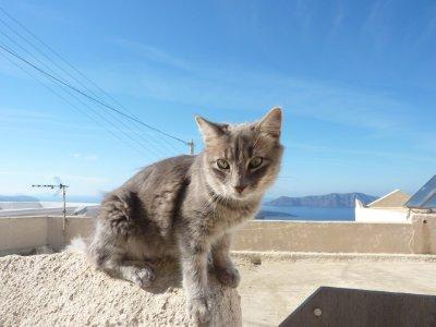 Santorini_.._of_Liz.jpg