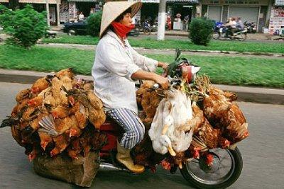 NF_110726_..en-bike.jpg