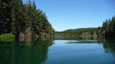 Waikato river scenery