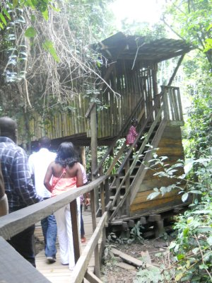 Kakum National Park - Canopy Walk!