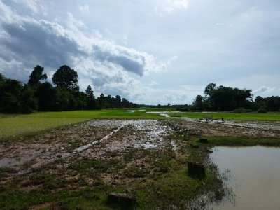 Campos_de_.._Angkor-004.jpg