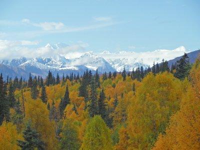 Cordillera de Alaska desde el tren