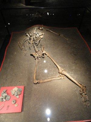 Skeleton of man