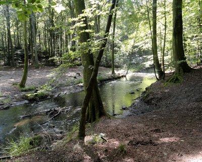 Giber River