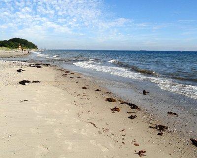 Moesgaard Beach