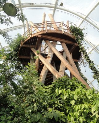 Observatory tower within the tropical greenhouse