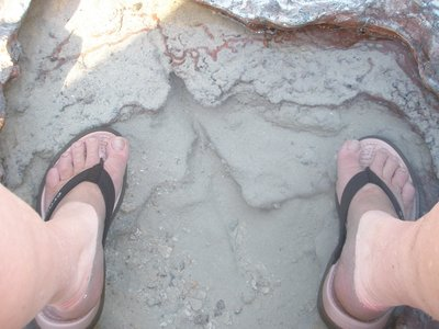 Dinasaur footprint on Cable Beach??