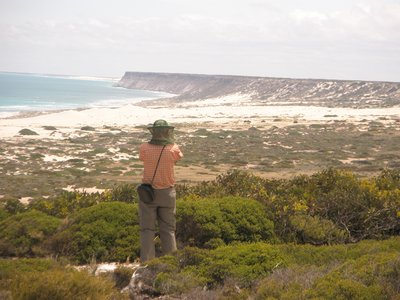 coastline on the Nullarbor