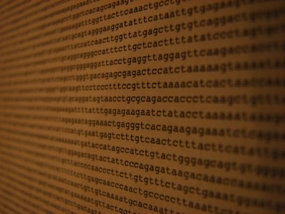 A small part of the human genome