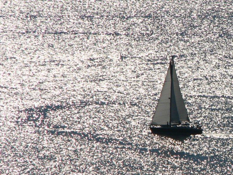 Sea of sparkles