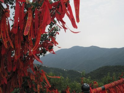 Wishes on Xiangshan Trees