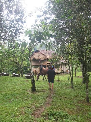 Bribri House