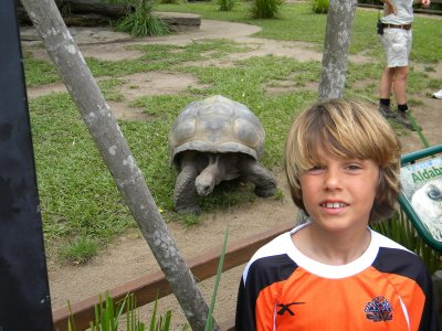 Sam and the Giant Turtle