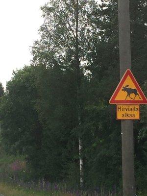 Deer Fence Sign