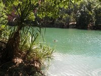 c_swimming_c.jpg