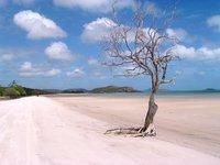 cb_The_Top_-_beach_aa.jpg