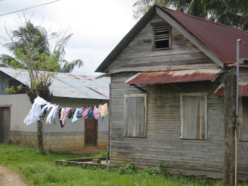 Caribbean Vibe in Livingston
