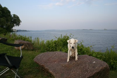 Calvin and the St Lawerance River in Gananoque