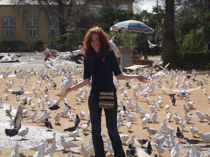 La plaza de las palomas