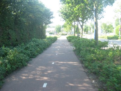 First Dutch Cycle Lane
