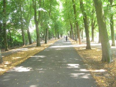 Munster Promenade