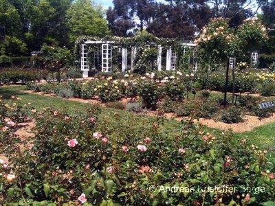 Parlament_garden.jpg
