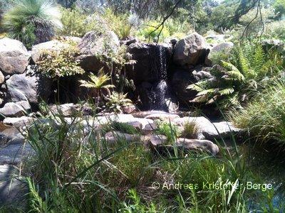 the_botanic_garden.jpg