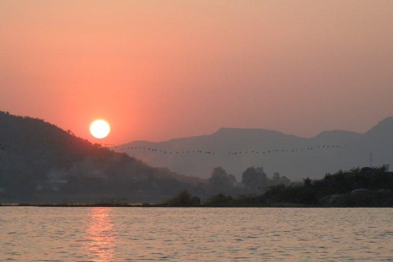 large_sunset_and_birds.jpg
