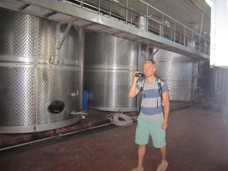 Wine Tour at Santo Wines