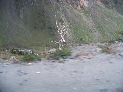 India 2011 1064