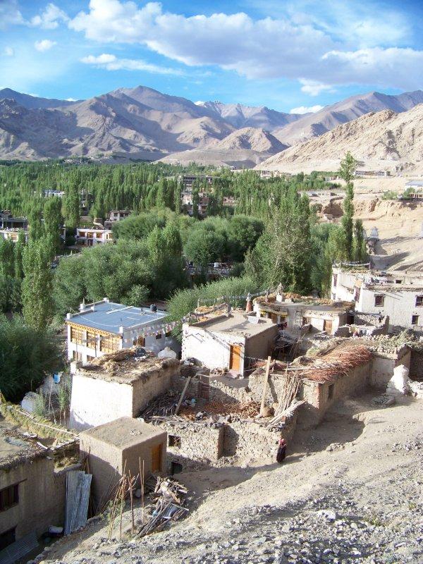 Leh region (40)