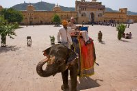 Me on an elephant, Jaipur, India