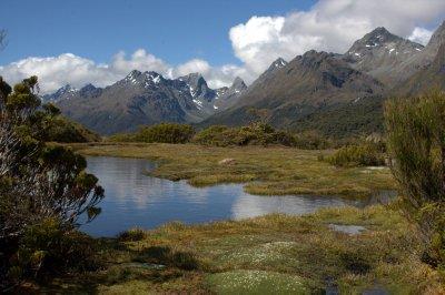 Alpine Bog on Key Summit