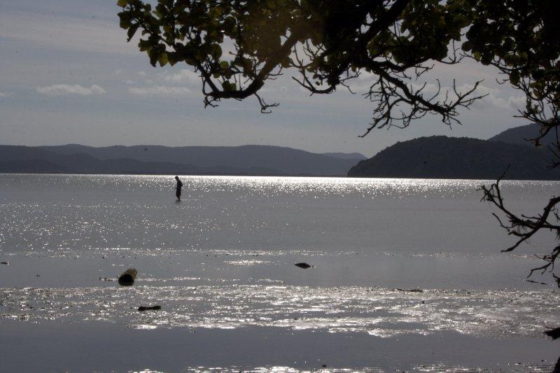 Sawdust Bay on Stewart Island