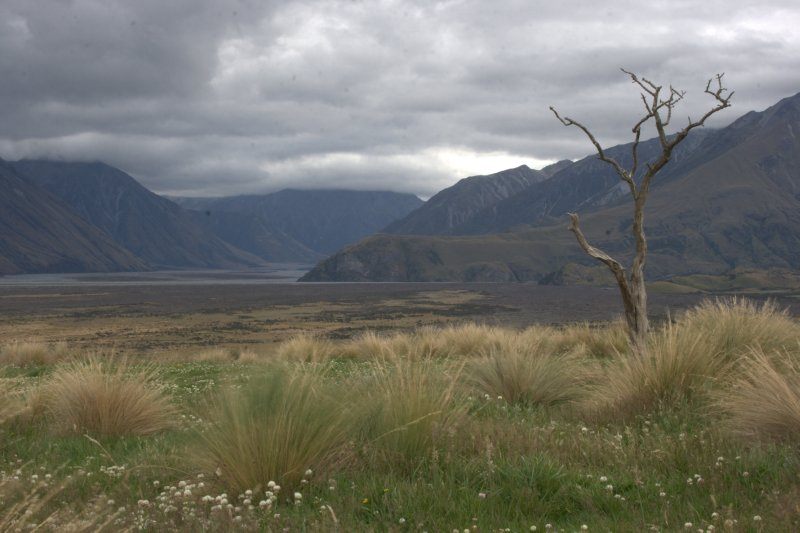 Rangitata River Valley
