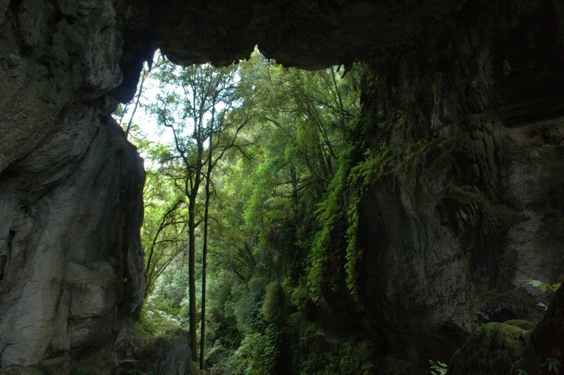 Mangapohoe Natural Arch