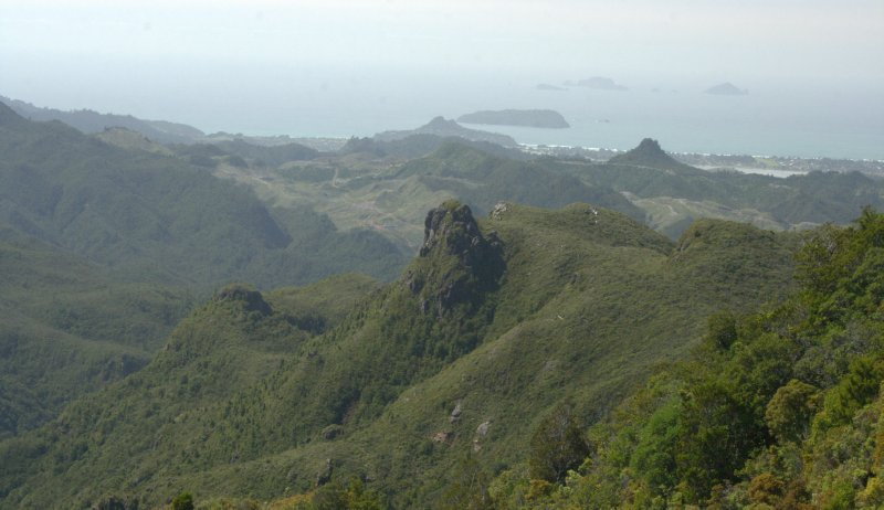 View from Pinnacles Track of East Coast Coromandel Peninsula