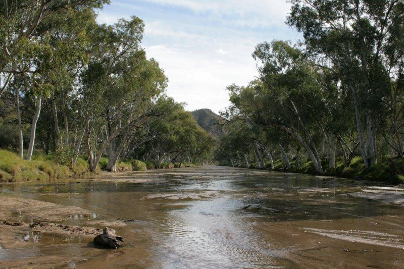 Benstead Creek beside Trephina Bluff