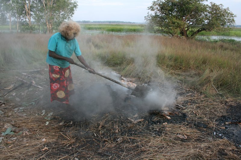 Covering Meat and Veggies in Ground Oven with Paperbark and Soil