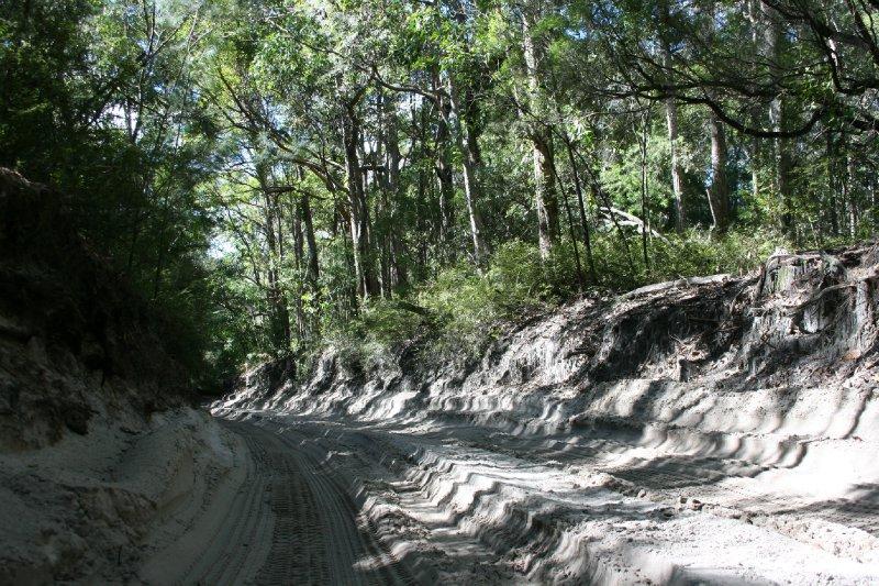 4WD Sandy Roads through Fraser Island