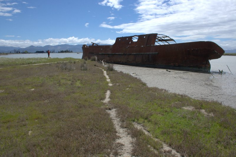 Wreck of S.S. Waverly at Wairau Lagoon Wetland Reserve