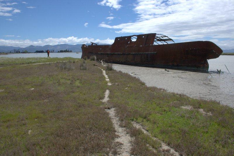 Wreck of S.S. Waverly at Wairau Lagoon Wetland Reserve