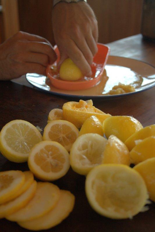 Making Lemonaide