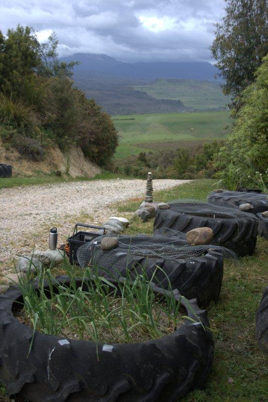Tractor Tire Veggie Gardens