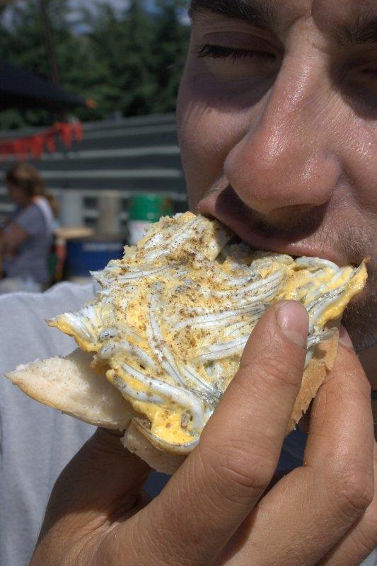 Whitebait Fritter